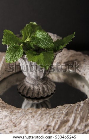 Mint in a gray vintage vase. on a gray stone background #533465245