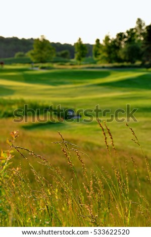 Blurred background of golf course #533622520
