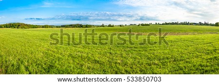 Green field landscape. Panoramic vista of spring meadow with grass and blue sky. #533850703