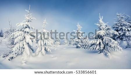 Panoramic view of mountain forest after heavy snowfall. Bright winter landscape in the snowy wood, Happy New Year celebration concept. Artistic style post processed photo.