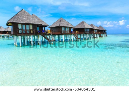 tropical beach in Maldives with few palm trees and blue lagoon #534054301