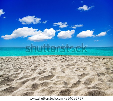 beautiful beach and tropical sea #534058939