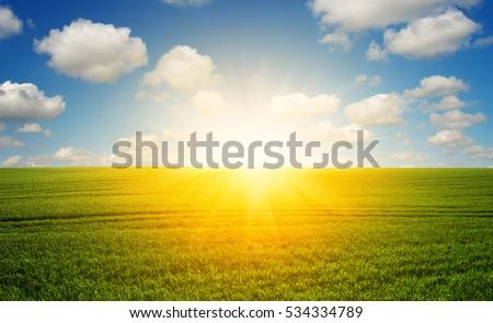 Green field,blue sky and sun.  #534334789