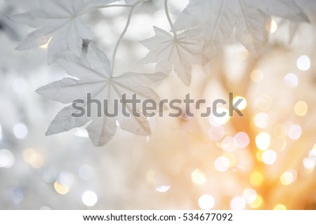 Christmas tree background with white artificial maple leaves with golden sun lighting style #534677092