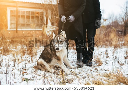 couple walking with a dog on the nature of out of town #535834621