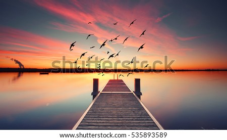Perspective view of a wooden pier on the pond at sunset with perfectly specular reflection Royalty-Free Stock Photo #535893589