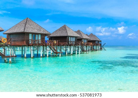 tropical Maldives resort hotel. island with beach and sea and coconut palm tree on sky . holiday vacation background  #537081973