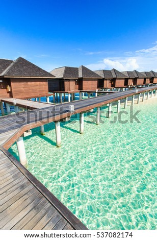 tropical beach in Maldives with few palm trees and blue lagoon #537082174