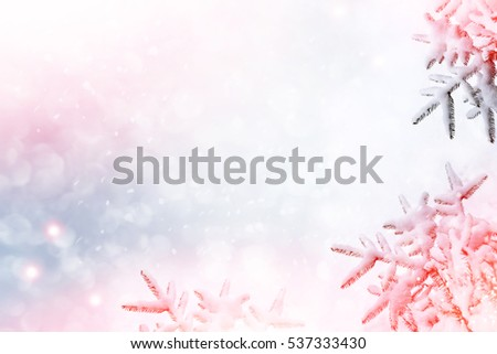 Frozen winter forest with snow covered trees. Christmas background. Royalty-Free Stock Photo #537333430