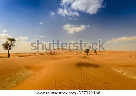 Mountains overlooking desert landscape #537922168