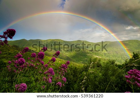 The Rainbow after the storm Royalty-Free Stock Photo #539361220