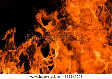 Blazing fire flame background #539960728