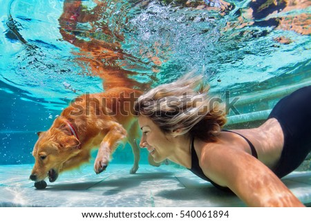 Underwater action. Smiley woman play with fun, training golden retriever puppy in swimming pool - jump and dive. Active water games with family pet, popular dog breed like companion on summer vacation #540061894