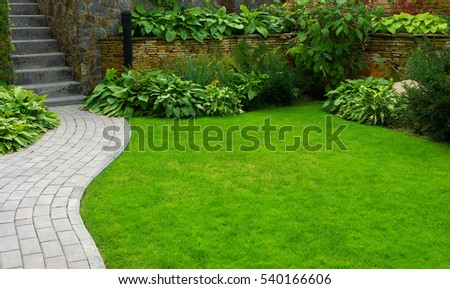 Garden stone path with grass growing up between the stones #540166606