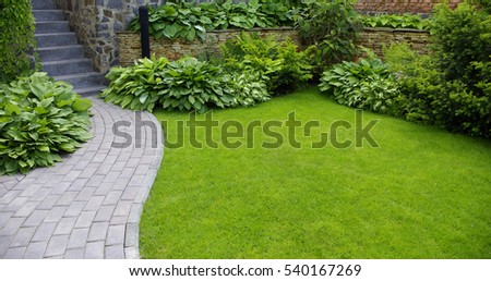 Garden stone path with grass growing up between the stones  #540167269