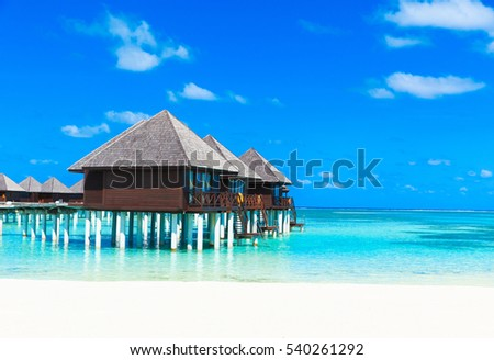 tropical beach in Maldives with few palm trees and blue lagoon #540261292