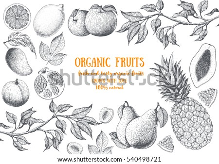 Fruits top view frame with papaya, pear, mango, pomegranate, lemon, peach, pineapple. Farmers market menu design. Healthy food poster. Vintage hand drawn sketch, vector illustration. Linear graphic. #540498721
