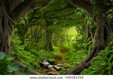 Deep tropical jungles with river in Southeast Asia Royalty-Free Stock Photo #540585358