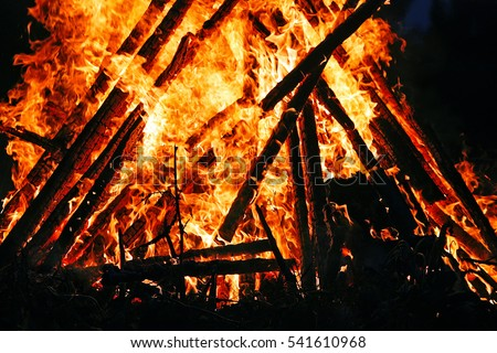 Bright bonfire flame outdoors. Firewood and wooden sticks burning in fire. #541610968
