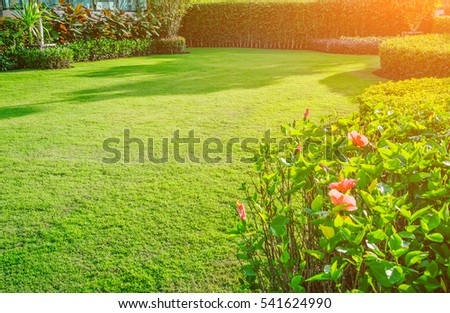 Backyard in spring, garden landscape design with tall and low shrubs and flowers has a beautiful rounded shape in the middle is a green grass, Newly cut lawn Lush green with morning sunlight. #541624990