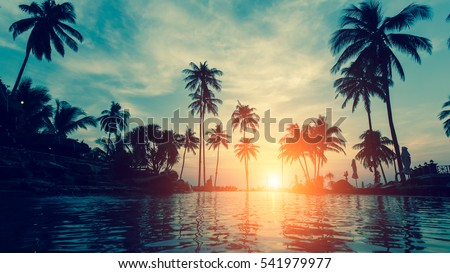 Beautiful tropical beach with palm trees silhouettes at dusk. Royalty-Free Stock Photo #541979977