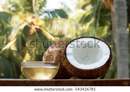 coconut and coconut oil with coconut tree background #543426781