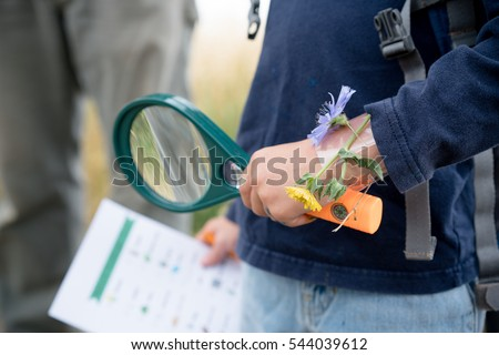 Magnifying glass and scavenger hunt in child's hands Royalty-Free Stock Photo #544039612