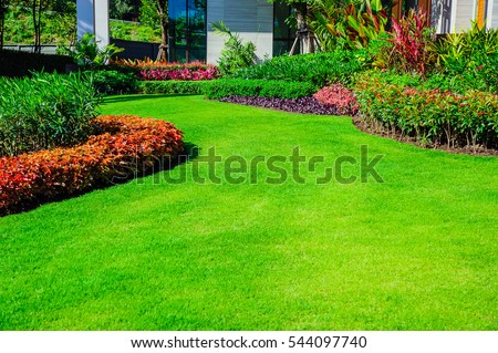 Front yard, landscape design With multicolored shrubs intersecting with bright green lawns Behind the house is a modern, garden care service, green grass with a beautiful yard for the background. Royalty-Free Stock Photo #544097740