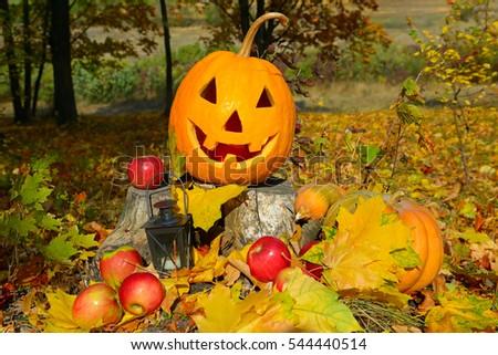 pumpkin-head against a background of an autumn forest #544440514