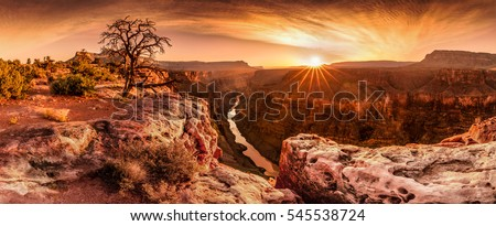 Grand Canyon, USA. Royalty-Free Stock Photo #545538724