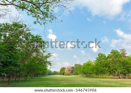 Green grass field in park at city center with blue sky  #546745906