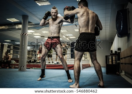 Two professionals fighters training together with punching pads at gym Royalty-Free Stock Photo #546880462