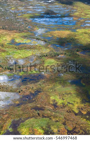 Top view of endless marshes in autumn #546997468