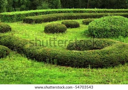 Grass #54703543