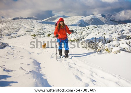 girl with dog walking on the trail in the mountains, winter in the mountains. #547083409