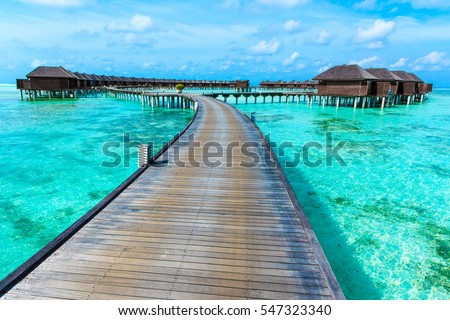 tropical beach in Maldives with few palm trees and blue lagoon #547323340
