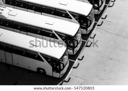 buses #547520803