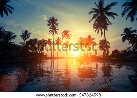 Beautiful sunset among the palms on a tropical beach. #547824598