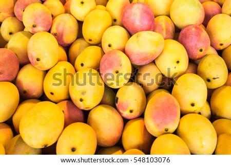 Mangoes #548103076