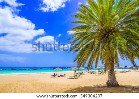 Beach in Tenerife, Canary Islands, Spain Royalty-Free Stock Photo #549304237