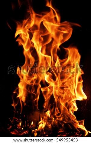 crest of flame on burning wood in fireplace #549955453