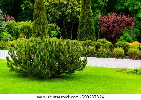 Landscape design #550237324