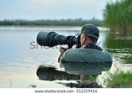 wildlife photographer outdoor, standing in the water