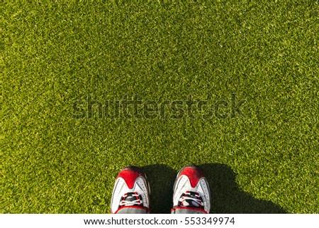 Artificial Grass Field Top View. shoes. #553349974