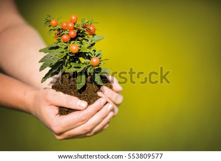Hands holding growing plant, on green background #553809577