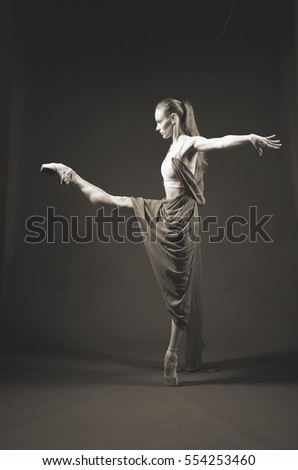 classic ballerina #554253460