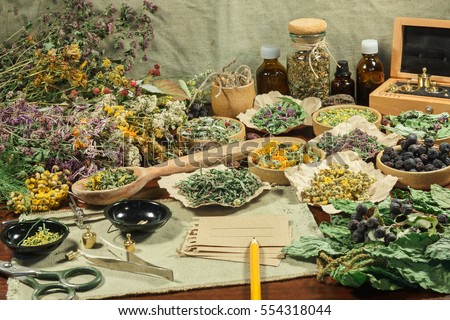 Set of healing herbs. Dried grass for use in alternative medicine, spa, herbal cosmetics, herbal medicine, preparing infusions, decoctions, tinctures, powders, ointments, butter, tea, bath. #554318044