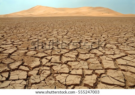 Sahara Desert, Morocco - Merzuga  #555247003