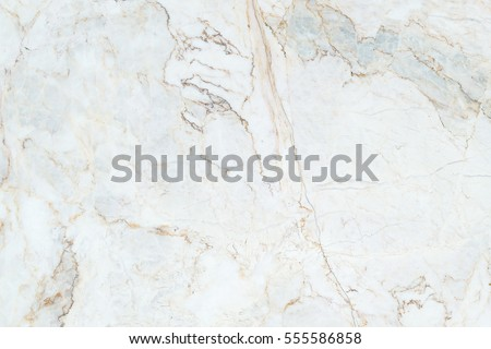 marble texture background #555586858