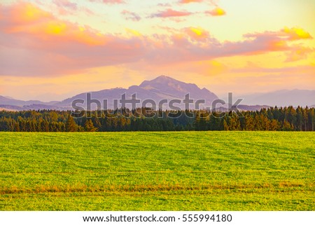 view of a meadow in unterallgau on evening #555994180